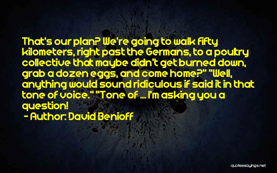 In The Past Quotes By David Benioff
