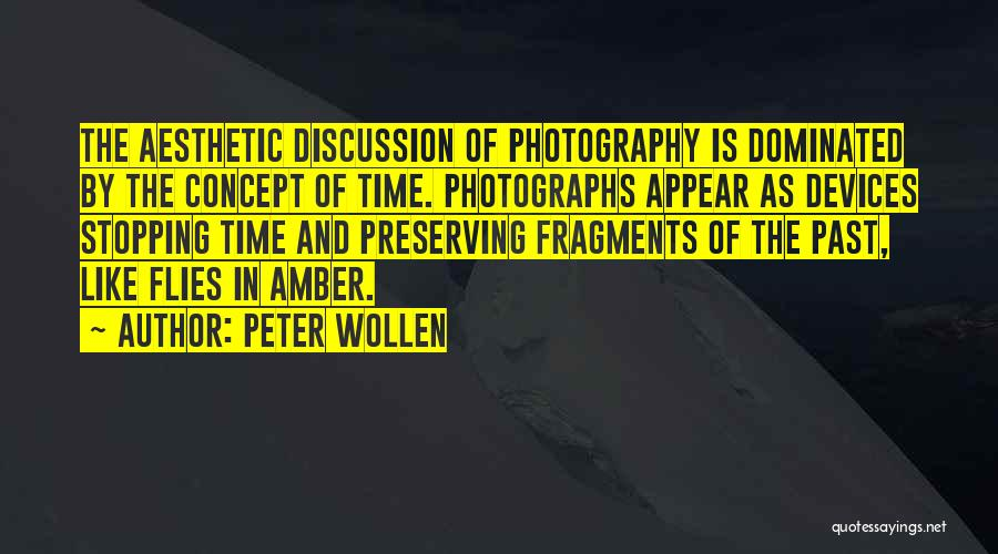 In The Past Quotes By Peter Wollen