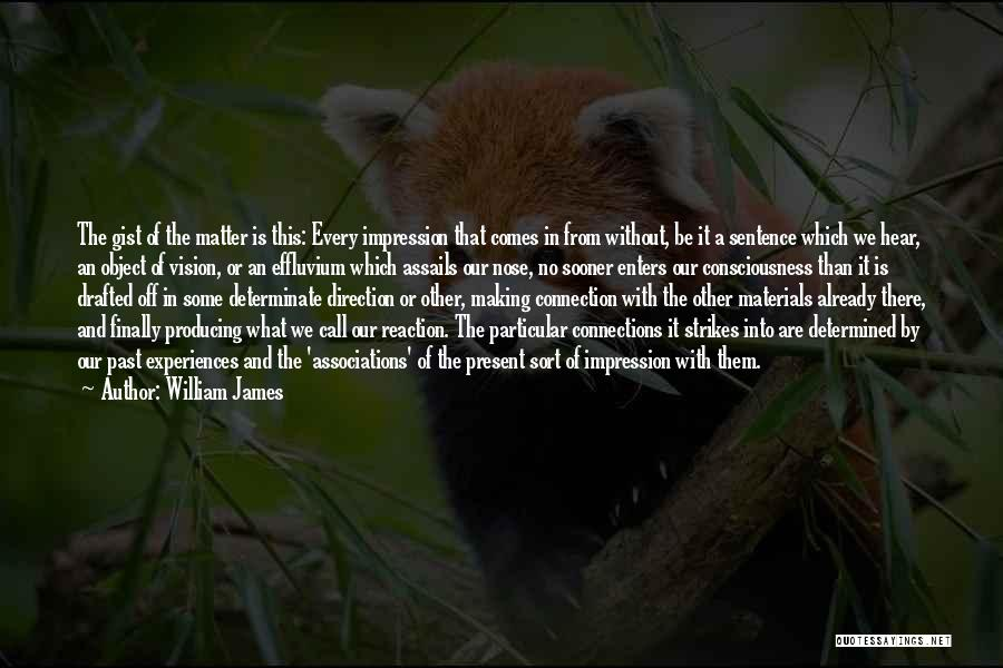 In The Past Quotes By William James