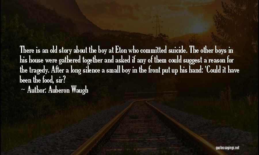 In The Silence Quotes By Auberon Waugh