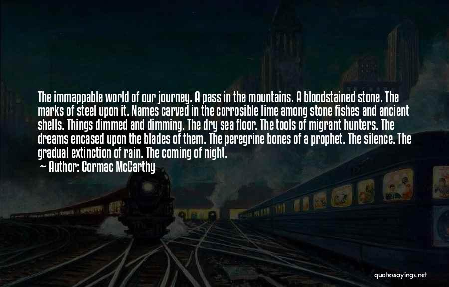 In The Silence Quotes By Cormac McCarthy
