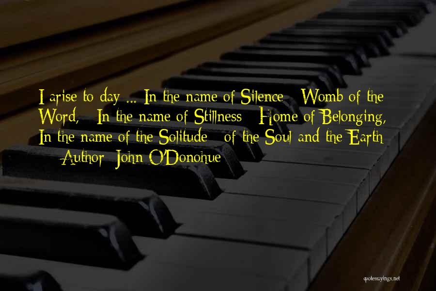 In The Silence Quotes By John O'Donohue