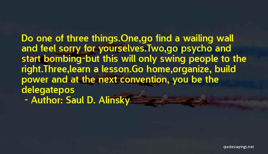 In This Home Wall Quotes By Saul D. Alinsky