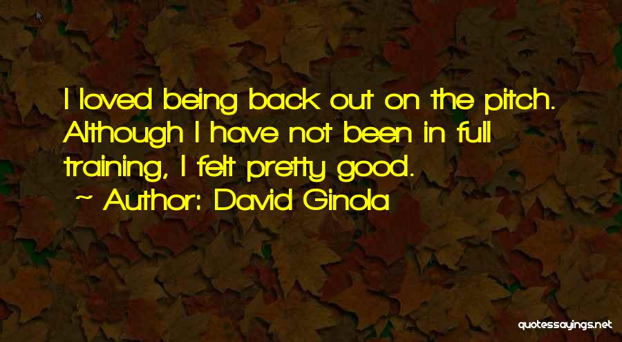 In Training Quotes By David Ginola