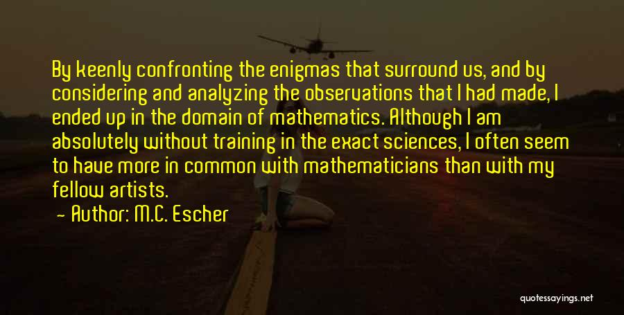 In Training Quotes By M.C. Escher
