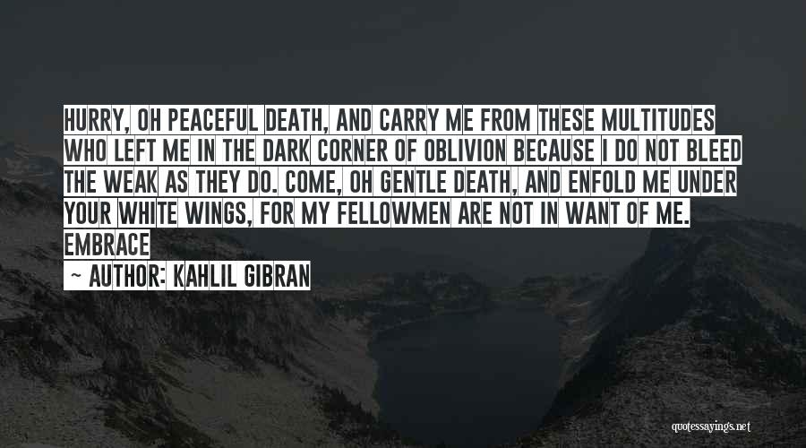 In Your Corner Quotes By Kahlil Gibran