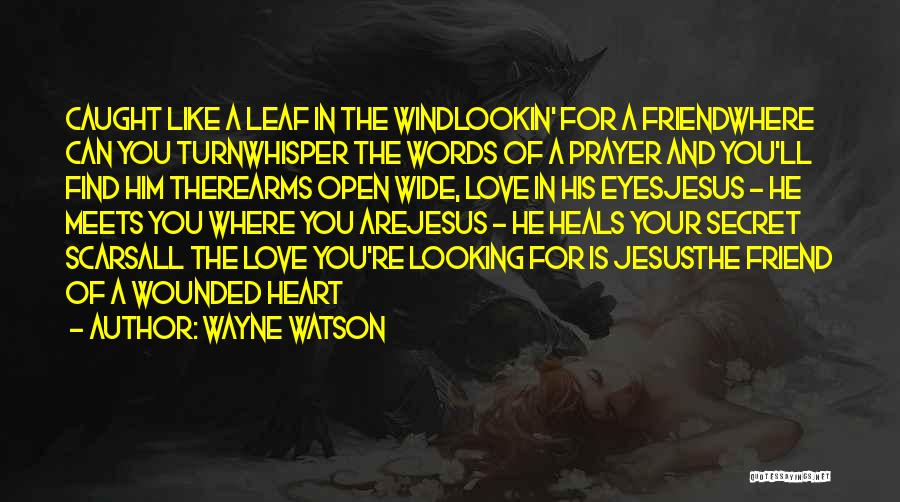 In Your Eyes Love Quotes By Wayne Watson