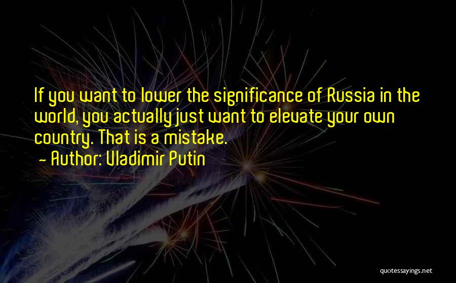 In Your Own World Quotes By Vladimir Putin