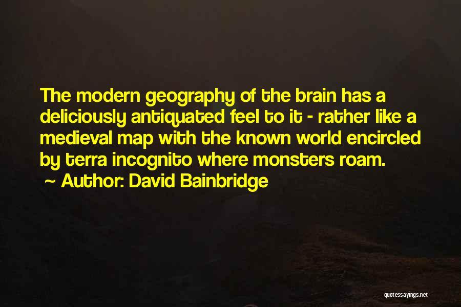 Incognito Quotes By David Bainbridge