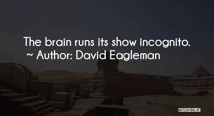 Incognito Quotes By David Eagleman