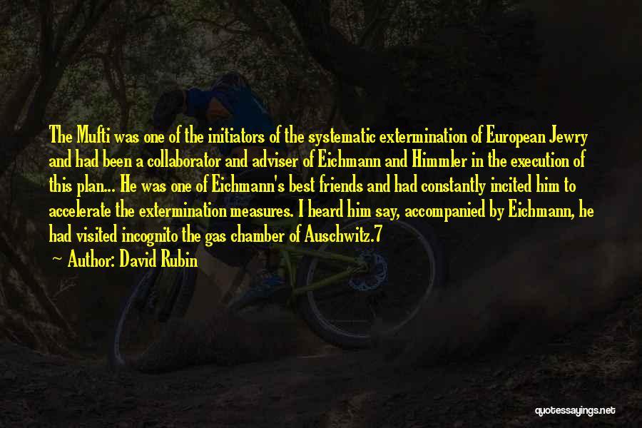 Incognito Quotes By David Rubin