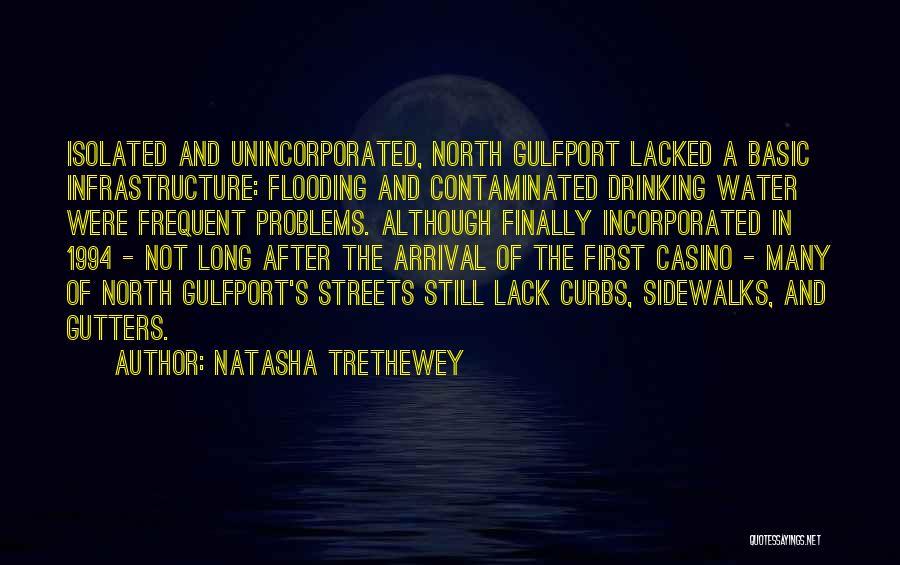 Incorporated Quotes By Natasha Trethewey