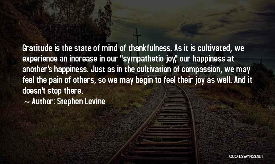 Increase Happiness Quotes By Stephen Levine