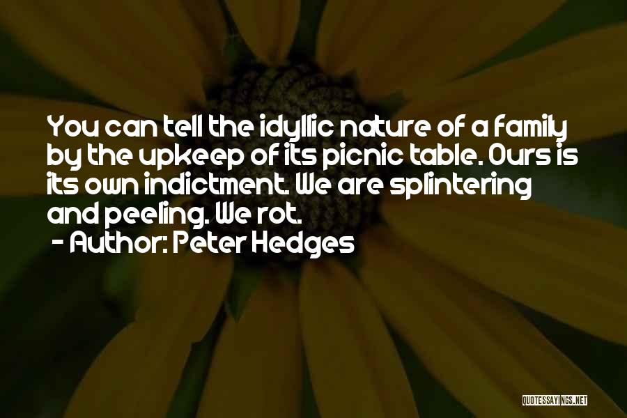 Indictment Quotes By Peter Hedges