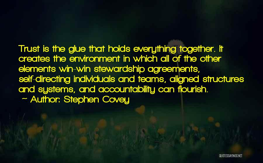 Individuals And Team Quotes By Stephen Covey