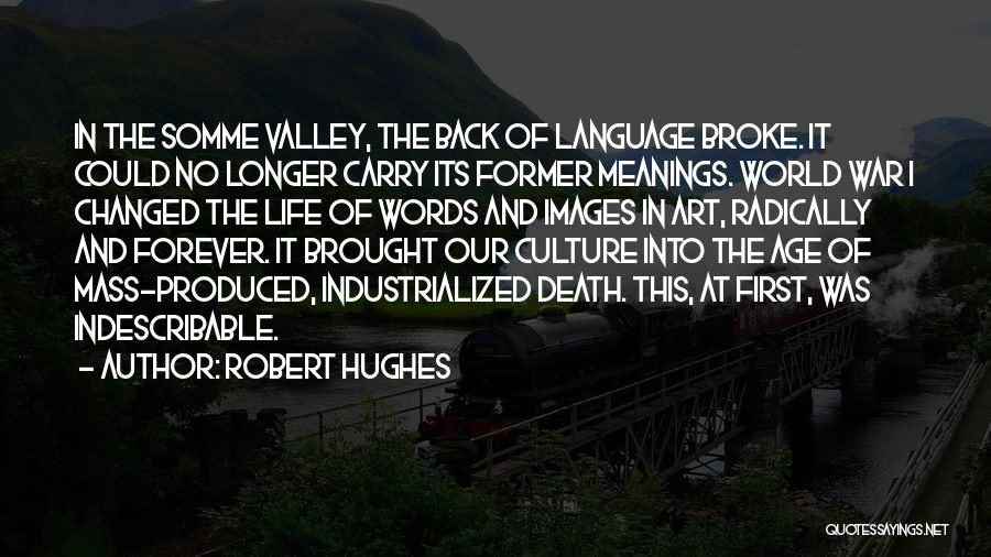 Industrialization Quotes By Robert Hughes
