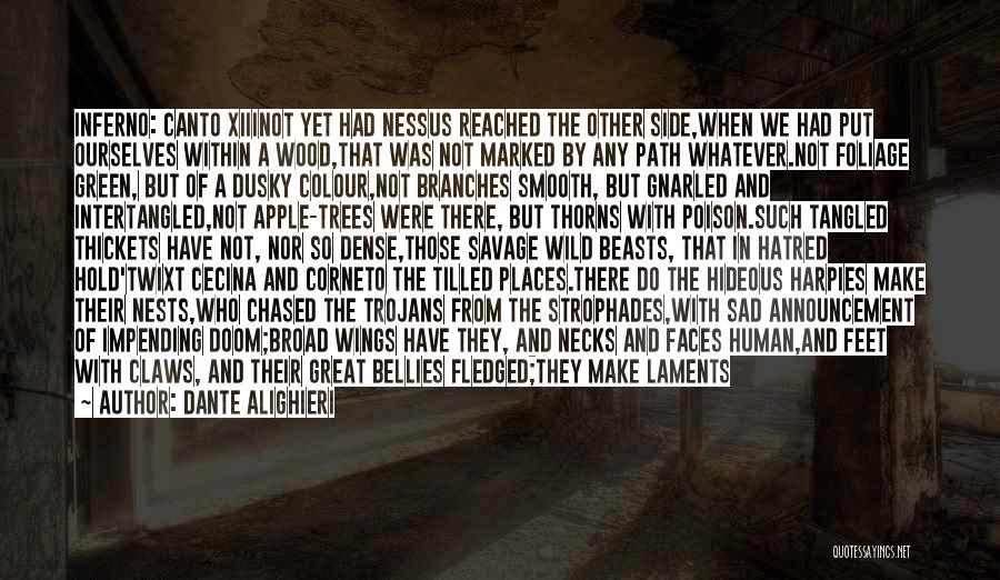 Inferno Canto 3 Quotes By Dante Alighieri