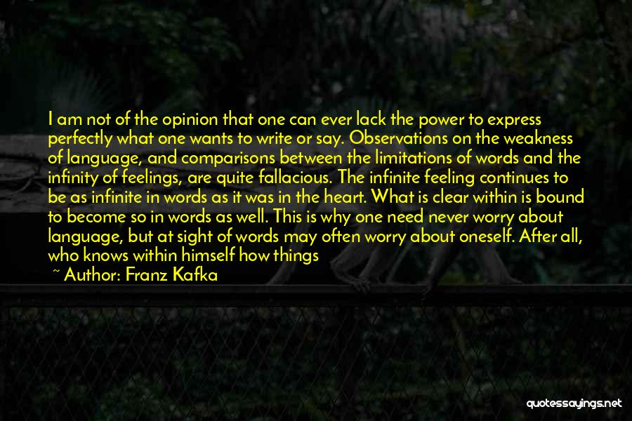 Infinite Power Quotes By Franz Kafka