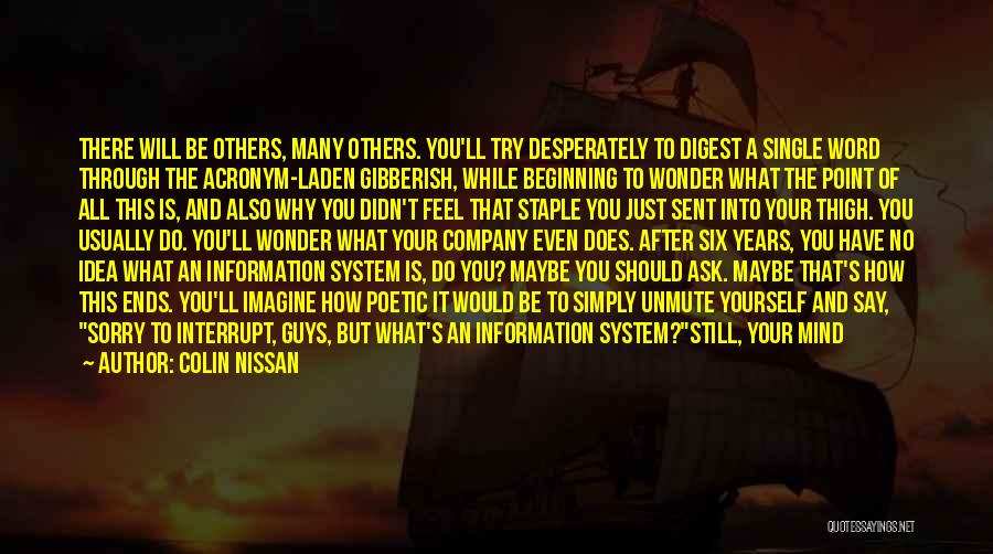 Information System Quotes By Colin Nissan