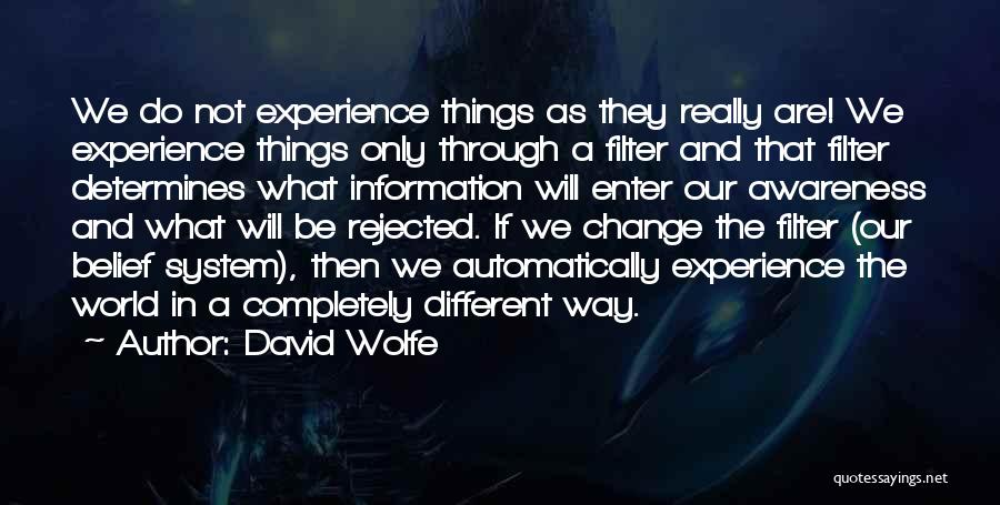 Information System Quotes By David Wolfe