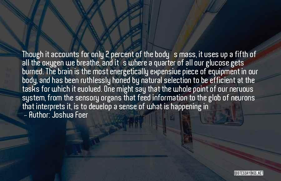 Information System Quotes By Joshua Foer