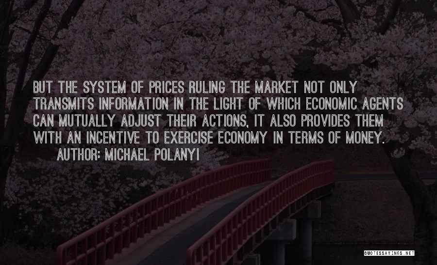 Information System Quotes By Michael Polanyi