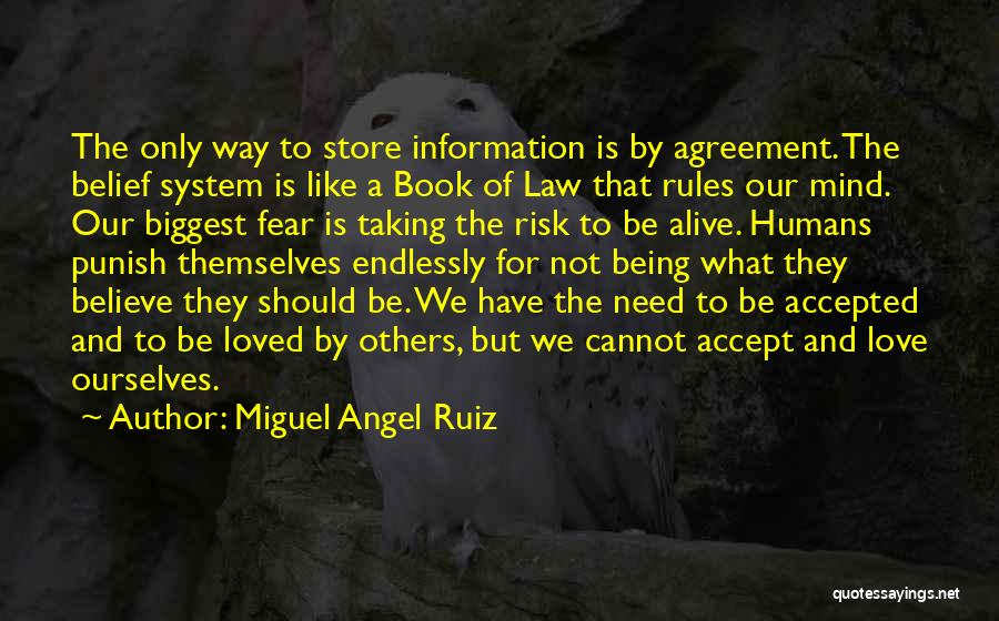 Information System Quotes By Miguel Angel Ruiz