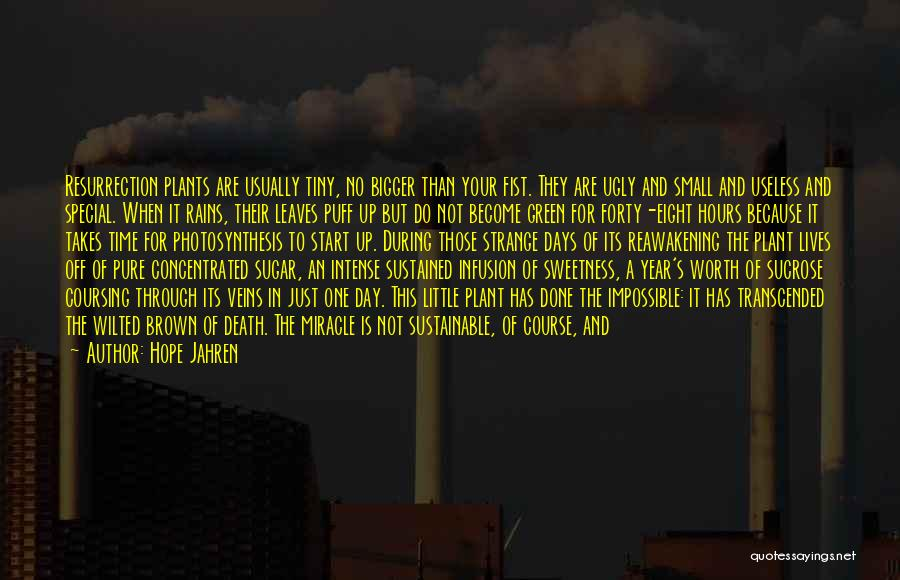 Infusion Quotes By Hope Jahren