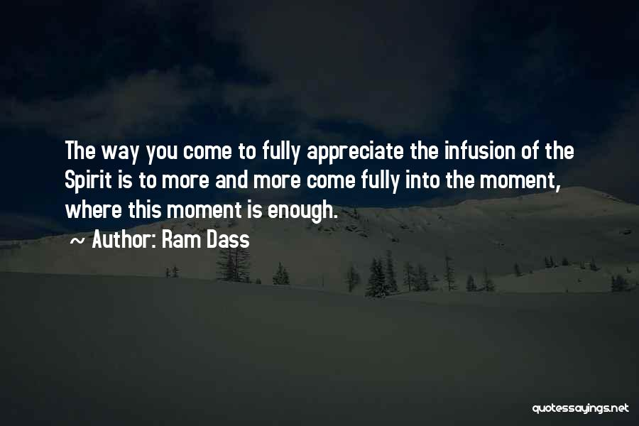 Infusion Quotes By Ram Dass