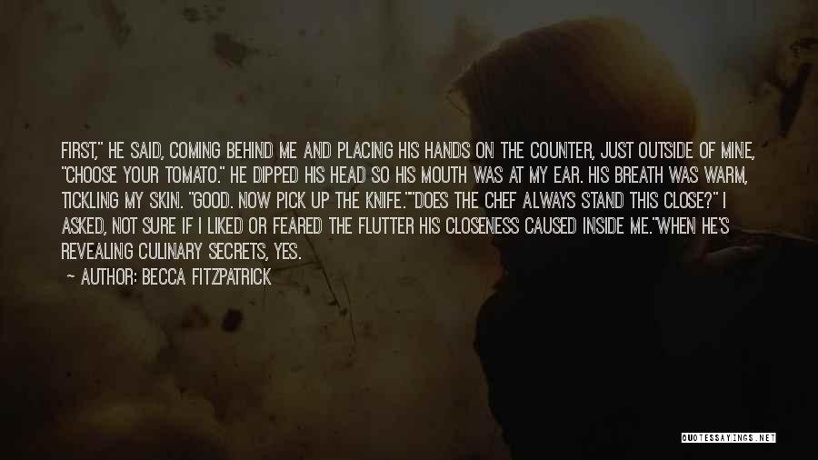 Inside Not Outside Quotes By Becca Fitzpatrick