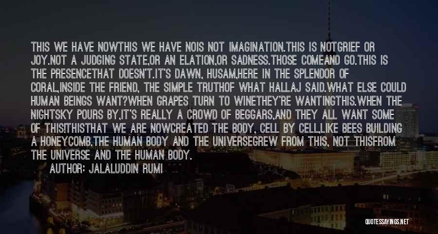 Inside The Human Body Quotes By Jalaluddin Rumi