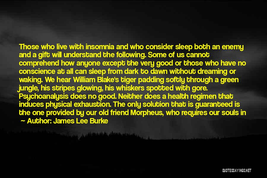 Insomnia Quotes By James Lee Burke