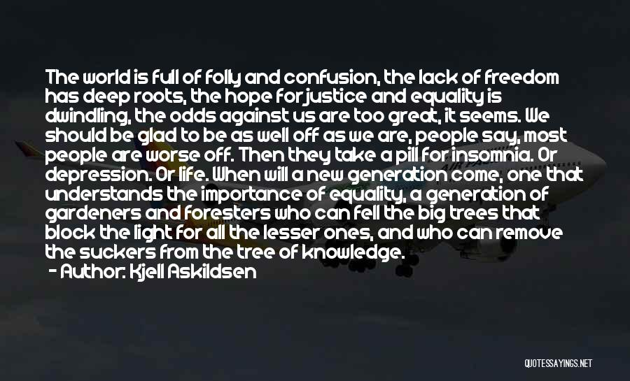 Insomnia Quotes By Kjell Askildsen
