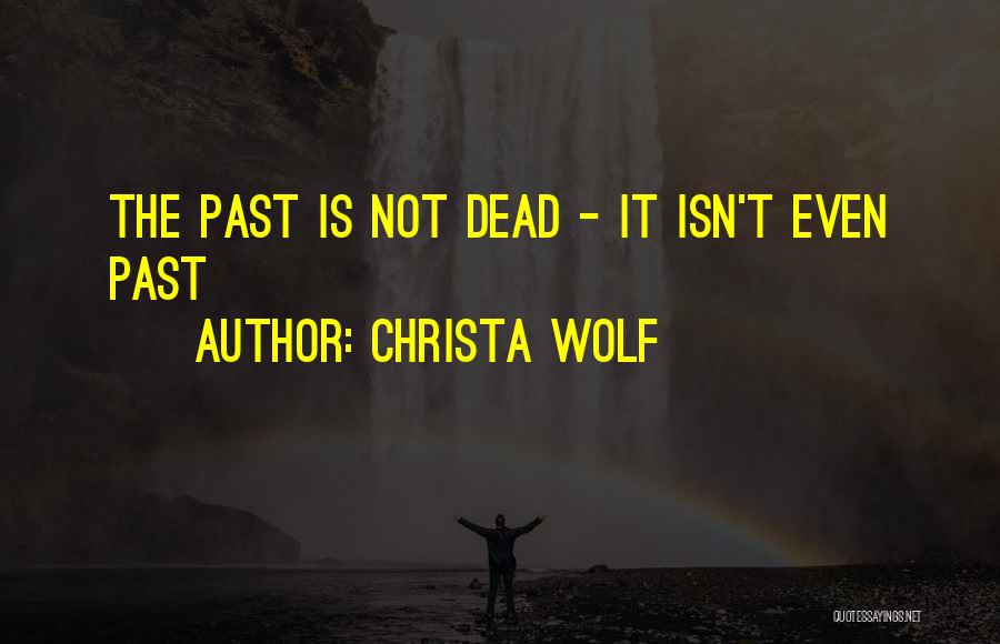 Inspirational Genealogy Quotes By Christa Wolf