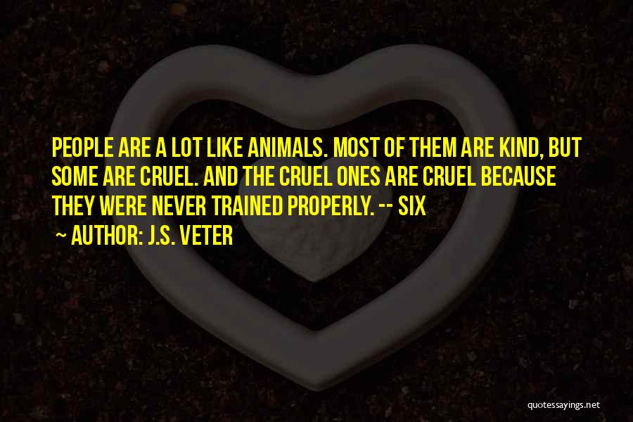 Inspirational Relationships Quotes By J.S. Veter