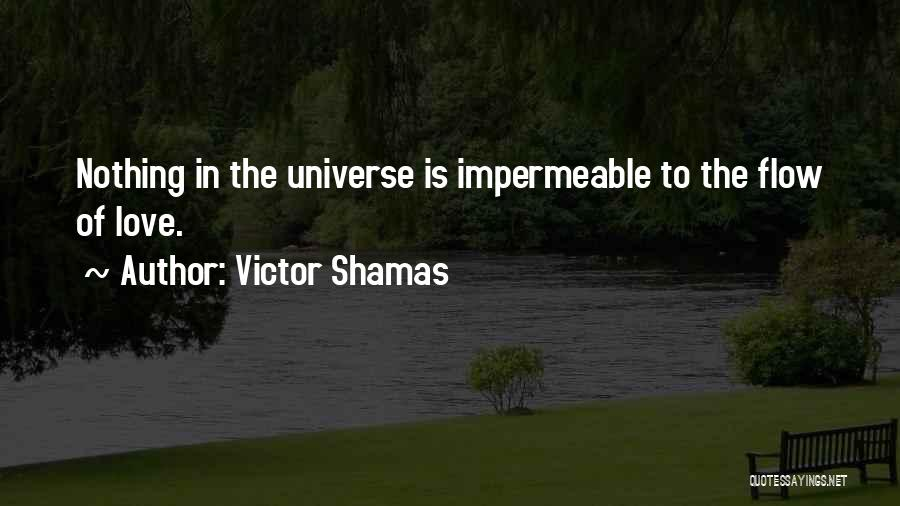 Inspirational Sayings And Quotes By Victor Shamas