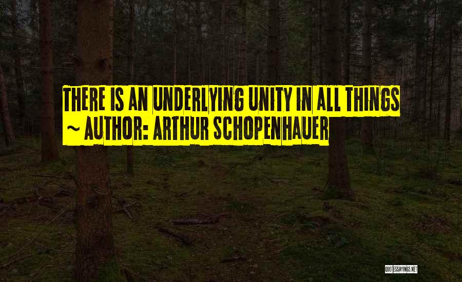 Inspirational Unity Quotes By Arthur Schopenhauer