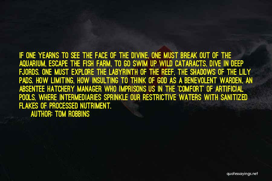 Insulting God Quotes By Tom Robbins