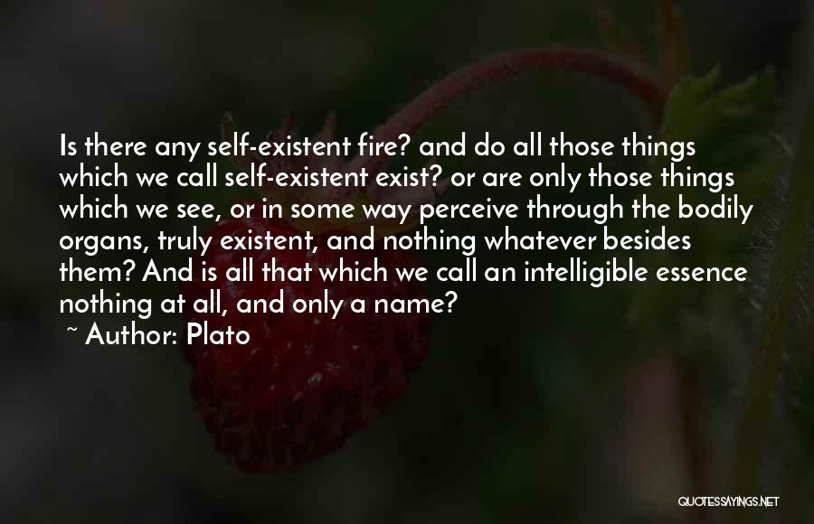 Intelligible Quotes By Plato