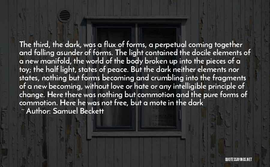Intelligible Quotes By Samuel Beckett