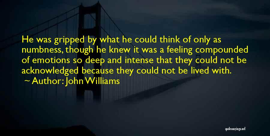 Intense Emotions Quotes By John Williams