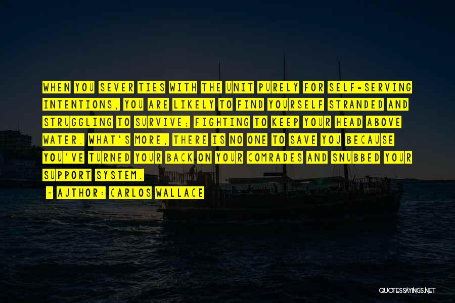 Intentions Quotes By Carlos Wallace