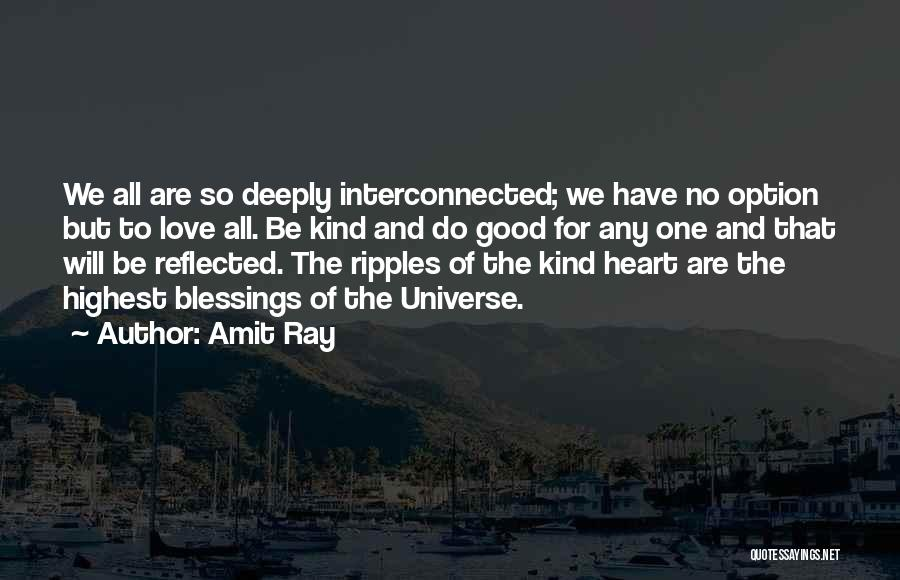 Interconnection Quotes By Amit Ray