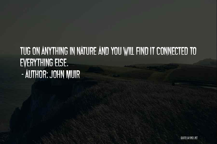 Interconnection Quotes By John Muir