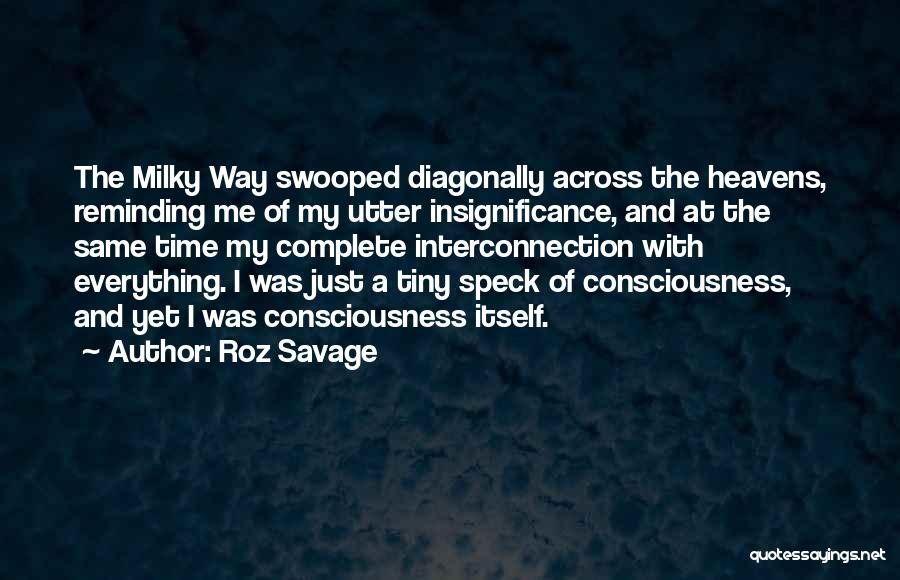 Interconnection Quotes By Roz Savage