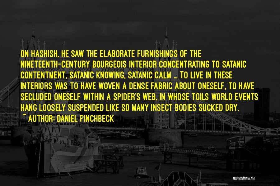 Interiors Quotes By Daniel Pinchbeck