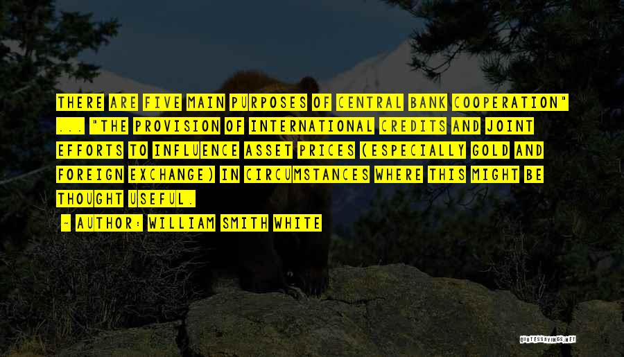International Cooperation Quotes By William Smith White