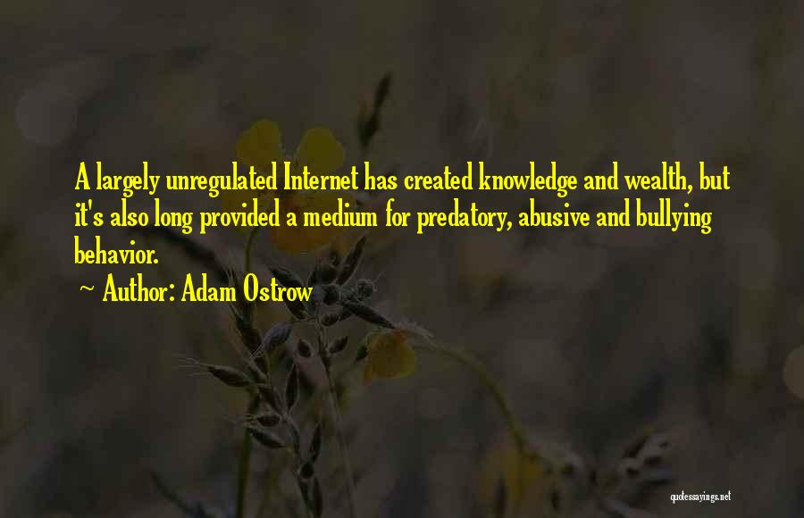 Internet And Knowledge Quotes By Adam Ostrow