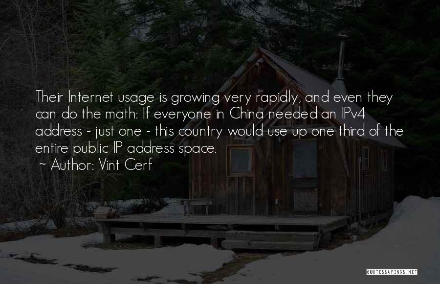 Internet Usage Quotes By Vint Cerf