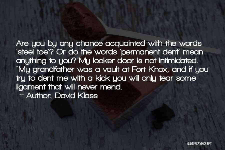 Intimidated By You Quotes By David Klass